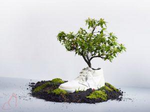 Piantala con i rifiuti piantando le tue scarpe