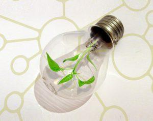 Progetto alternativo le lampadine al led costeranno di meno for Lampadine led economiche