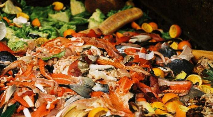 spreco cibo spazzatura