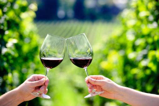 vino sostenibile