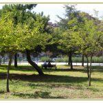 Parco della Garbatella