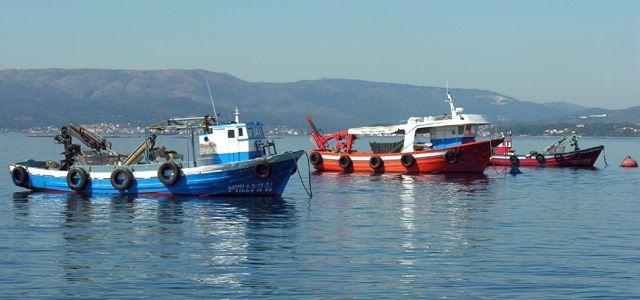 navi da pesca