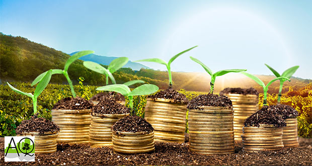 incentivi green