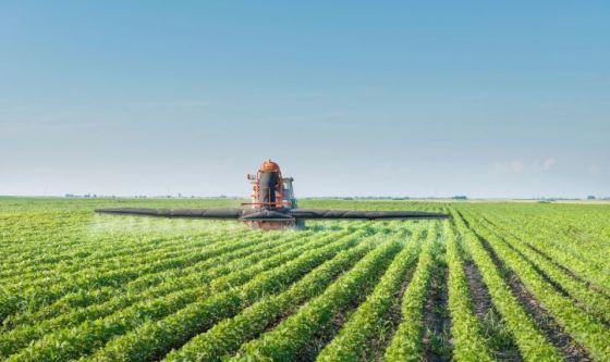 verdura-frutta-pesticidi-spermatozoi-quantit-21838