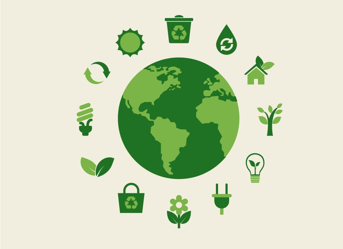 Fornitori di energia elettrica rinnovabile ENEGAN (1)