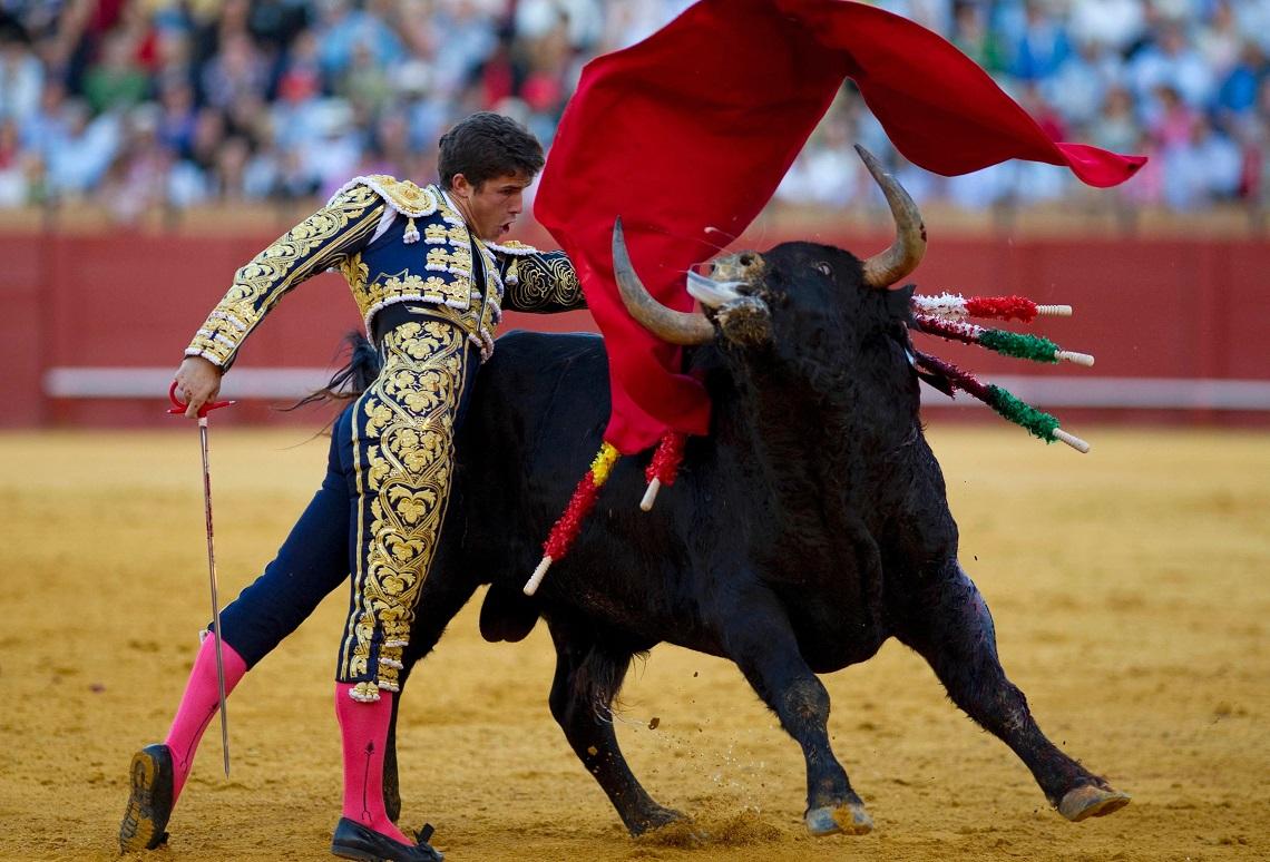Victor Barrio: il torero che muore incornato in diretta TV