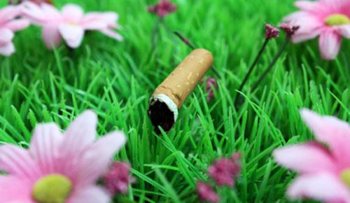 Sigaretta nei fiori