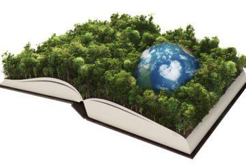 libro ambiente
